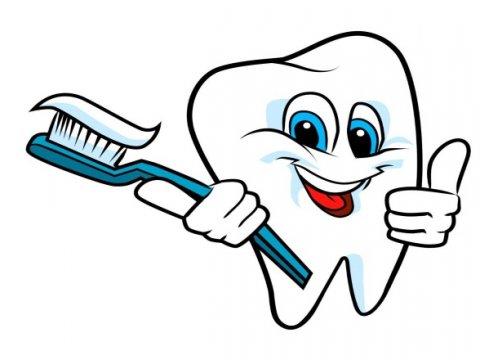 Наша главная помощница - зубная щетка.